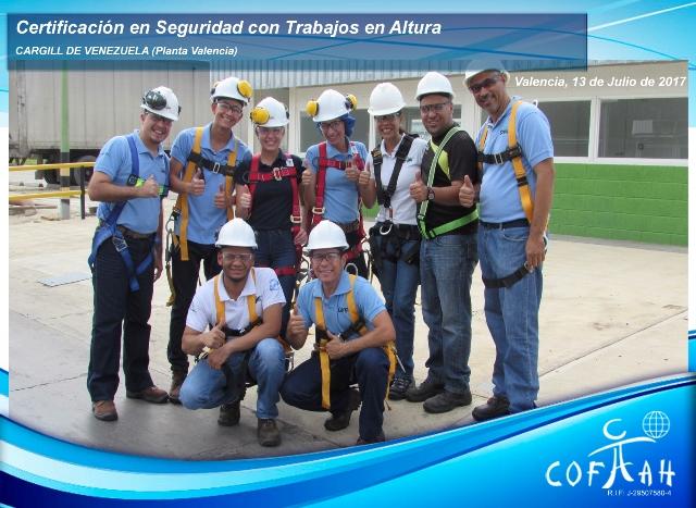 Certificación en Seguridad con Trabajos en Altura (CARGILL) Valencia
