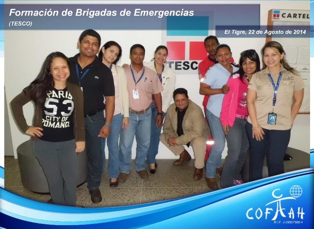 Formación de Brigadas (TESCO) El Tigre