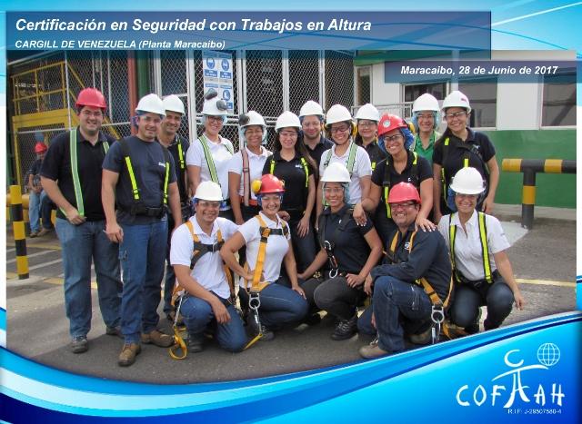 Certificación en Seguridad con Trabajos en Altura (CARGILL) Macaraibo