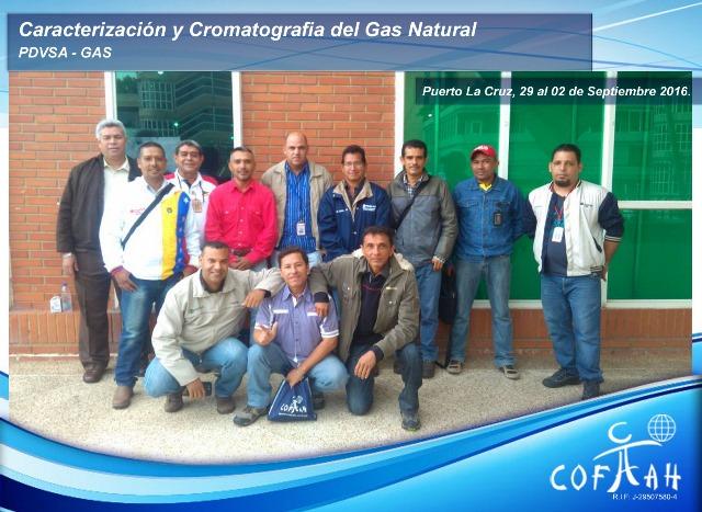 Caracterización y Cromatografía del Gas Natural (PDVSA Gas) Puerto la Cruz