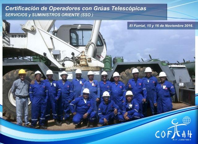 Certificación de Operadores con Grúas Telescópicas (SSO) El Furrial
