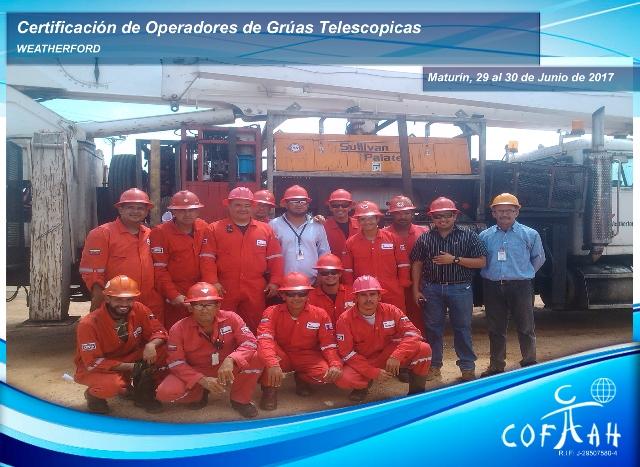 Certificación de Operadores de Grúas Telescópicas (WEATHERFORD) Maturín
