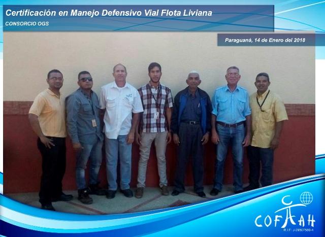 Certificación en Manejo Vial Defensivo - Flota Liviana (Consorcio OGS) Paraguaná -