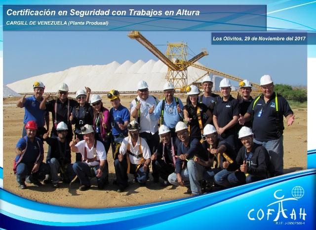 Certificacion en Seguridad con Trabajos en Altura (CARGILL) Los Olivitos