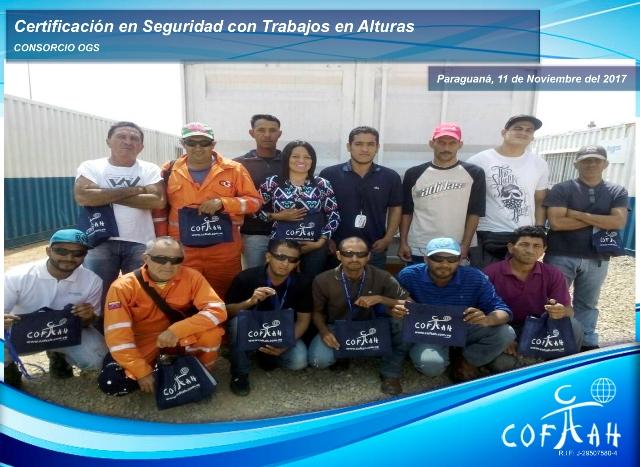 Certificación en Seguridad con Trabajos en Altura (OGS) Paraguaná
