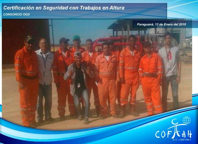 Certificación en Seguridad con Trabajos en Altura (Consorcio OGS) Paraguaná