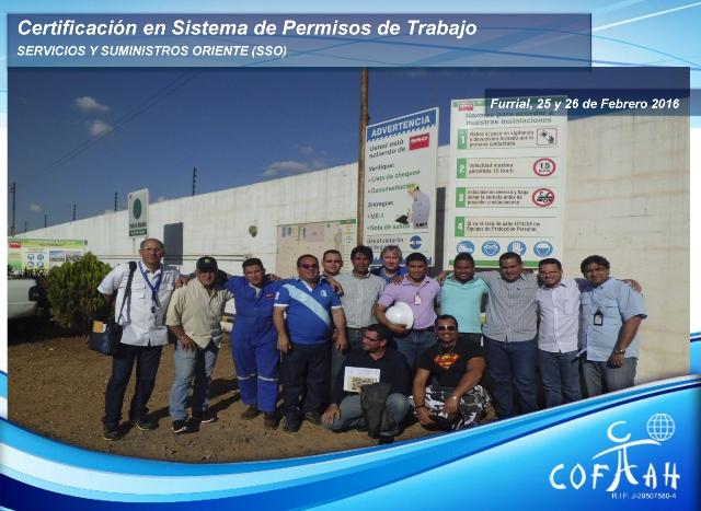 Certificación en Sistema de Permisos de Trabajo (SSO) El Furrial
