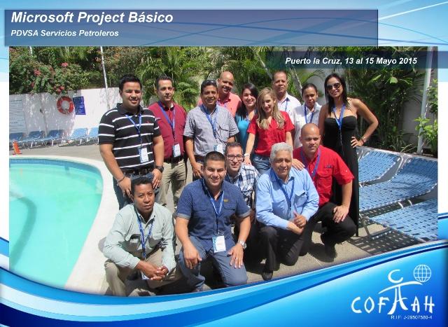 Microsoft Project Básico (PDVSA Servicios) Puerto La Cruz