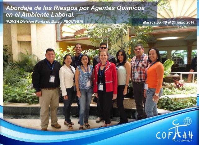 Abordaje de los Riesgos por Agentes Químicos en el Ambiente Laboral (PDVSA) Maracaibo
