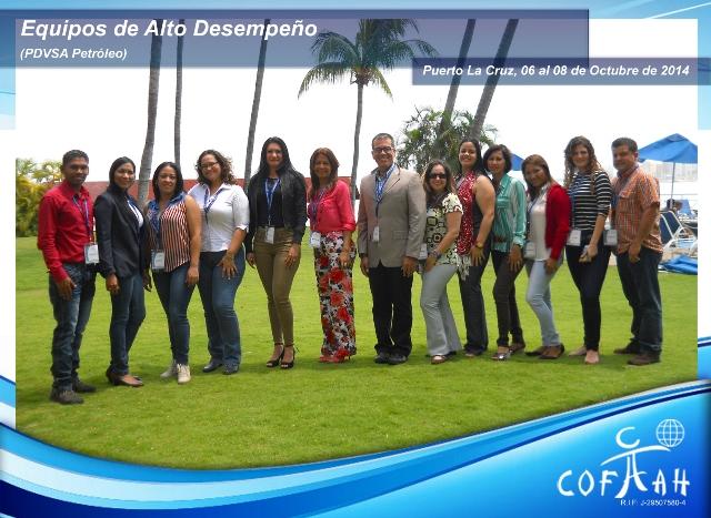 Equipos de Alto Desempeño (PDVSA Petróleo) Puerto La Cruz