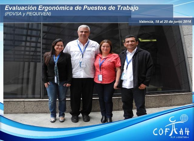 Evaluación Ergonomica de Puestos de Trabajo (PDVSA y PEQUIVEN) Valencia