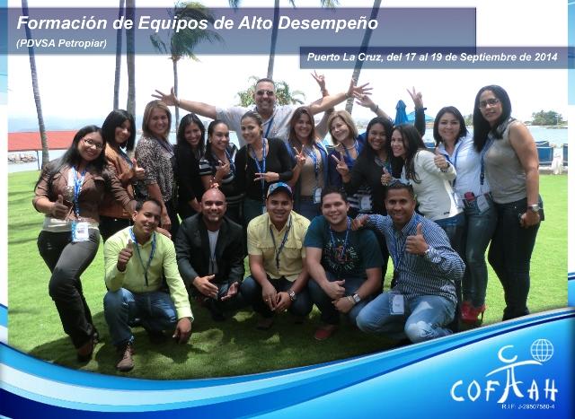 Formación de Equipos de Alto Desempeño (PDVSA Petropiar) Puerto La Cruz