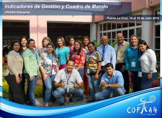 Indicadores de Gestión y Cuadro de Mando (PDVSA Petropiar) Puerto La Cruz
