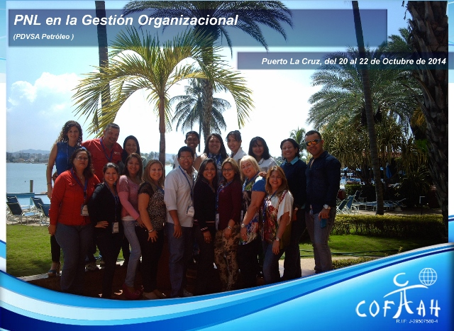 PNL en la Gestión Organizacional (PDVSA) Puerto La Cruz