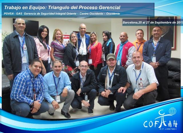 Trabajo en Equipo: Triángulo del Proceso Gerencial (PDVSA Gas) Barcelona