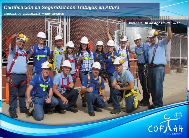 Certificacion en Seguridad con Trabajos en Altura (CARGILL) Valencia
