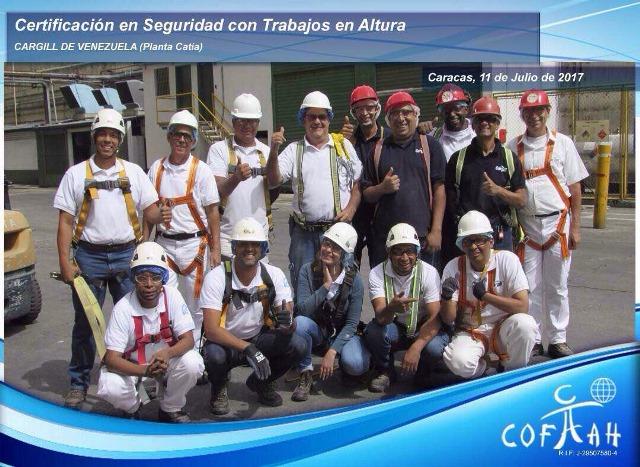Certificación en Seguridad con Trabajos en Altura (CARGILL) Caracas