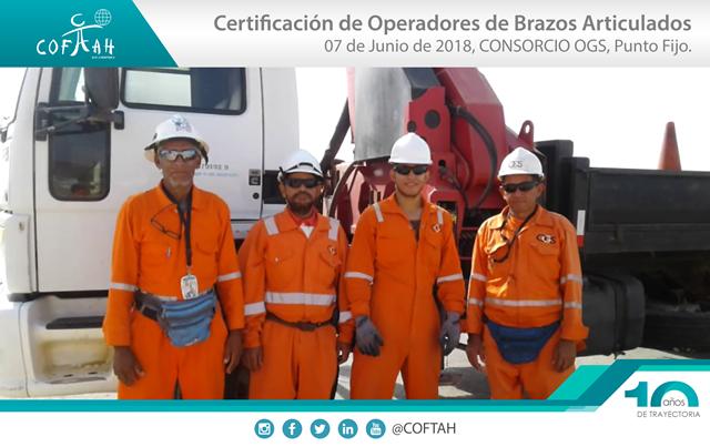 Certificación de Operadores de Brazos Artículados (OGS) Punto Fijo