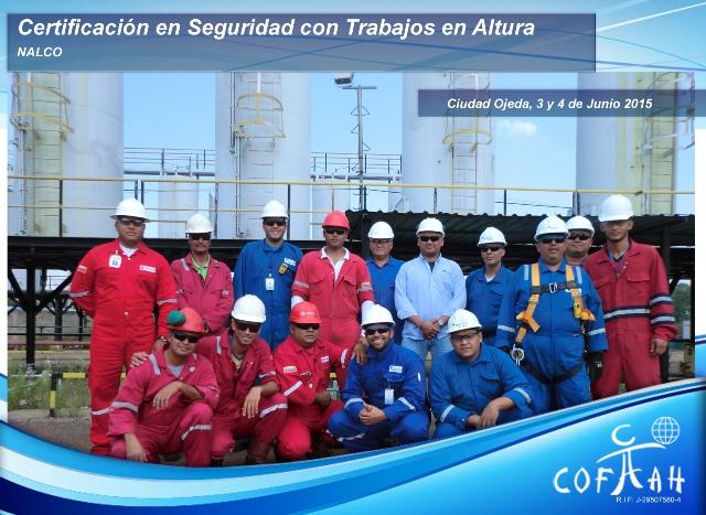 Certificación en Seguridad con Trabajos en Altura (NALCO) Ciudad Ojeda