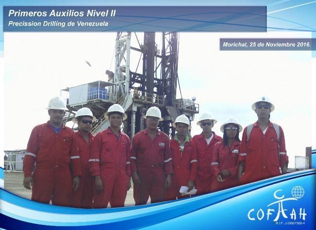Primeros Auxilios Nivel II (Precisión Drilling) Morichal