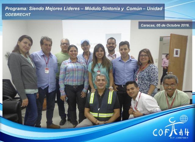 Programa: Siendo Mejores Líderes – Módulo Sintonía y Común – Unidad (ODEBRECHT) Caracas