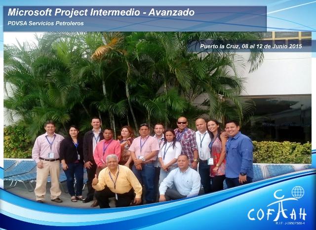 Microsoft Project Intermedio - Avanzado (PDVSA Servicios) Puerto La Cruz