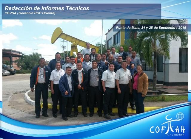 Redacción de Informes Técnicos (PDVSA) Punta de Mata