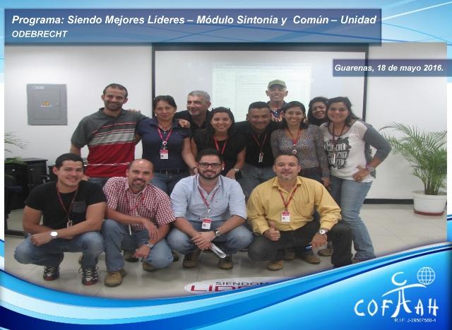 Programa: Siendo Mejores Líderes - Módulo Sintonía y Común - Unidad (ODEBRECHT) Guarenas