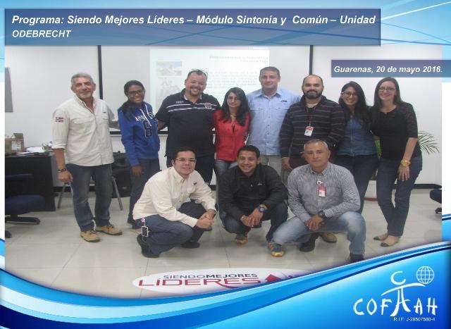 Programa: Siendo Mejores Líderes – Módulo Sintonía y Común – Unidad (ODEBRECHT) Guarenas