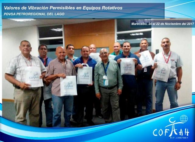 Valores de Vibración Permisibles en Equipos Rotativos (PDVSA Petroregional) Maracaibo