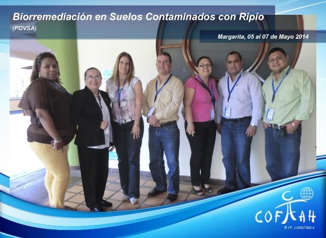 Biorremediación en Suelos Contaminados con Ripio (PDVSA) Isla de Margarita