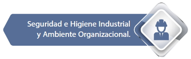 Seguridad e higiene Industrial y Ambiente Organizacional