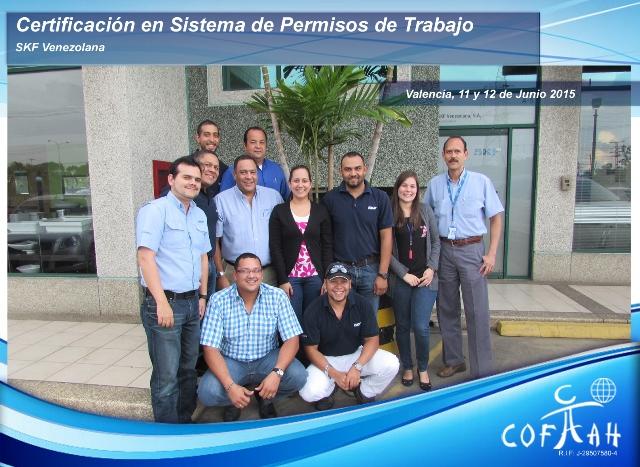 Certificación en Sistema de Permisos de Trabajo (SKF Venezolana) Valencia