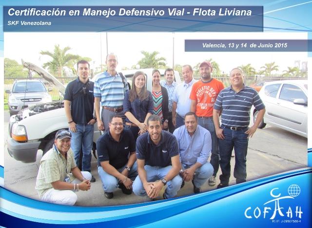 Certificación en Manejo Vial Defensivo Vial - Flota Liviana (SKF Venezolana) Valencia